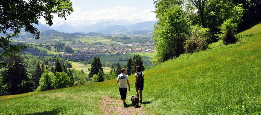 alpenregion
